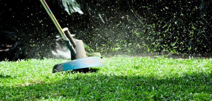 TuesdayTips 7 Ways to Safely Trim the Grass 600x3981